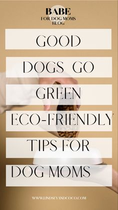 Sustainability and being eco-friendly can seem overwhelming. But let fellow dog mom and sustainability exper Lena Samford lead the way. Check out these easy ways all of us can reduce our pets' carbon footprints and make the earth a cleaner place. #dogmom #doglovers #ecofriendlyliving #sustainable #gogreen Green Tips, Go Green, Living With Dogs, Pet Shampoo, Health Tips For Women, Flea And Tick, Footprints, Dog Training Tips, Pet Beds
