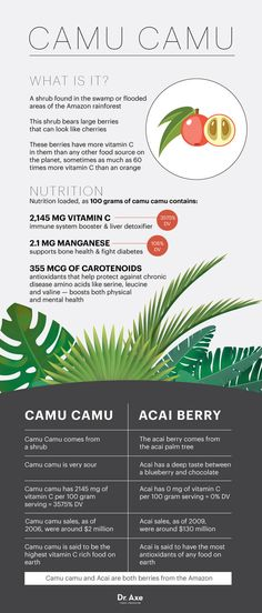 What is camu camu? - Dr. Axe http://www.draxe.com #health #holistic #natural