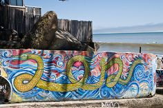 Water Dragon graffiti on Bolinas Beach