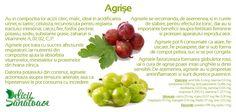 Gooseberries @DeliciiSanatoas Cantaloupe, Fruit, Food, Eten, Meals, Diet