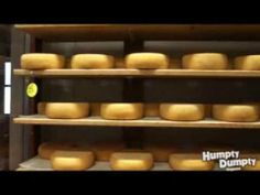From Cow to Cheese - Humpty Dumpty Magazine video about cheesemaking