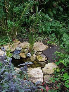 can't you just picture a little frog moving in here? can't you just picture a little frog moving in here? Backyard Water Feature, Ponds Backyard, Pond Landscaping, Landscaping With Rocks, Small Garden Wildlife Pond, Pond Design, Garden Design, Landscape Design, Bog Garden