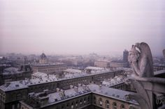 Gargoyle overlooking Paris, France