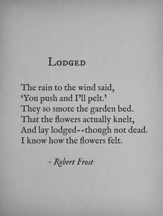 "I said to myself, ""One more poem,"" at midnight. Then my tired eyes found this. Thanks, Mr. Frost, for making me go to bed!"