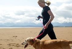 Workout with your pet :-) early morning hours when weather is cooler.  DO NOT take your beloved pet out in the HEAT!!!