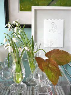 le monde de kitchi: Friday - Flowerday # 6