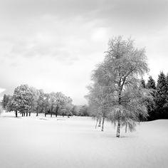 Winterruhe - Stover - Devon