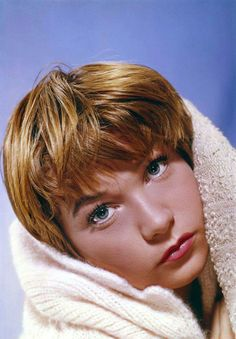 45 Beautiful Photos of Young Shirley MacLaine in the and ~ vintage everyday Katharine Hepburn, Audrey Hepburn, Ingrid Bergman, Marlene Dietrich, Judy Garland, Bette Davis, Elizabeth Taylor, Classic Hollywood, Old Hollywood