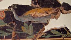 IC 180 Calatayud, Spain 1st-century fresco of a peacock eating fruit