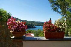 """Prestigious villa for sale in Tuscany - """"VILLA MURAGLIA"""" Coastal Properties TUSCANY Grosseto Monte Argentario mpge002610"""