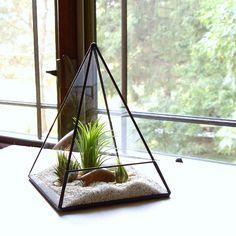 Terrarium Glass Pyramid Planter with Air Plant DIY Kit Desk Accessory Clear - 25 Elegant Diy Terrarium Kit Concept Terrarium Diy, Air Plant Terrarium, Glass Terrarium, Glass Planter, Casa Retro, Air Plants, Plant Decor, Diy Kits, Planting Flowers