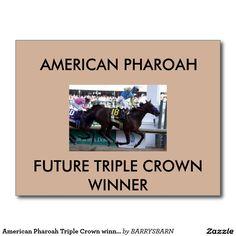 American Pharoah Triple Crown winner postcard