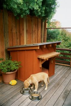 Build a Mini Ranch House for Your Pooch | DIY doghouse: Get our free plans and instructions for this great-looking shelter