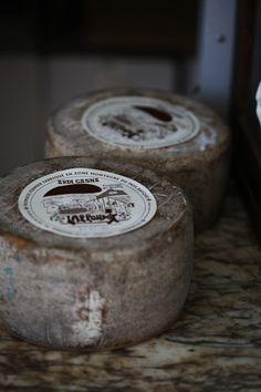 """floorabella:    """"Cheese…"""""""