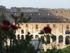 Roma -Colosseo