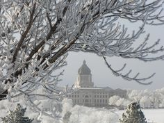 Pierre, SD : South Dakota Capitol Building on a Frosty December morning (2008)