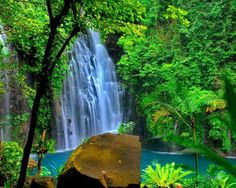 Tinago Falls is a waterfall in Iligan City, Lanao del Norte in the southern Philippine island of Mindanao.