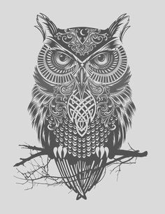 Owl is the symbol for wisdom, foresight, and keeper of sacred knowledge. Owl enegy symbolizes Wisdom, Mystery, Transition, Messages, Intelligence, Mysticism, Protection, Secrets