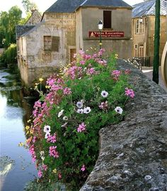 """38 Gorgeous Gardens in Bloom -  """"On the outskirts of Bayeux, France, one can not help but notice these lovely flowers that frame a dramatic old bridge.""""  (Courtesy DWaiste/myBudgetTravel)"""