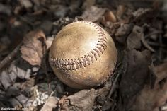 This baseball is one of many found in the abandoned Rockaway Beach branch of the Long Island Railroad.