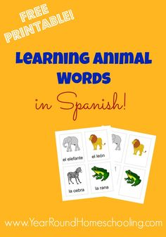 Teaching your kids the spanish animal words is fun and easy with this free printable from Year Round Homeschooling! Simple Spanish Words, How To Speak Spanish, Learn Spanish, Spanish Basics, Spanish Lessons, Spanish Teacher, Teaching Spanish, Spanish Flashcards, Elementary Spanish