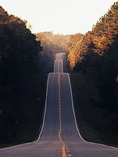Offset Your Summer Road Trip - Roadtrip