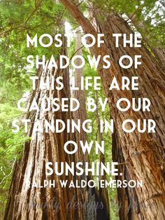 Ralph Waldo Emerson quote on Muir Woods Photograph. - via Etsy.