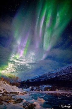 "tulipnight: ""Auroras ymas Aurora Borealis+++++ by Namaliedy on Flickr. """