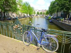 Bicycles are very popular in Amsterdam