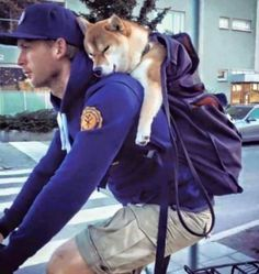 Walkies? No thanks, i got a backpack.