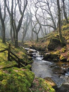 Moor Brook, Dartmoor by DartmoorGiant on Flickr........