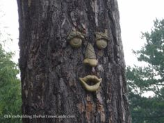 Best Tree Decor - You can find tree faces for your favorite trees and dress up your landscape - great for Halloween and anytime.