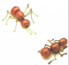 Cherry Ants