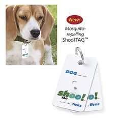 Epilady Flea Zapper - Problem Solvers for Home, Yard, Garden, Auto – Pest and Animal Control