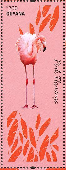 Chilean Flamingo stamps - mainly images - gallery format