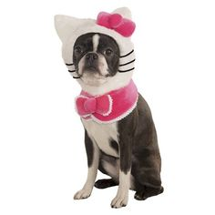 Hello Kitty Accessory Kit Pet Costume