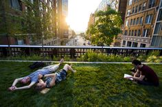 The lawn on the new section of Chelsea's High Line Park