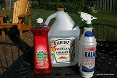 Lizzies Tips on FB: BEST Weed Spray. Worked better than Round Up & killed the weeds/stray grass on first application. One gallon of APPLE CIDER VINEGAR, 1/2 c table salt, 1 tsp Dawn. Mix and pour into a smaller spray bottle.""