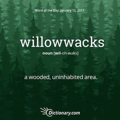 Willowwacks: a wooded, uninhabited area Unusual Words, Weird Words, Rare Words, Big Words, Words To Use, Unique Words, Great Words, Interesting Words, Cultura General