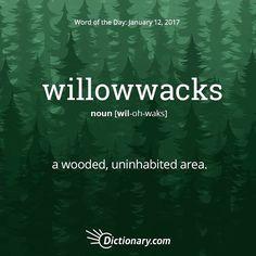 willowwacks
