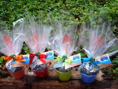 Kit Plantio com vasinho, semente, pazinha e terra!