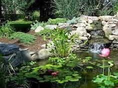 Jardim de stefania     * VI E GOSTEI *       Lagos com formas orgânicas:   Um lago é sempre um ponto de atração para o jardim.   Além d...