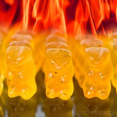 Evil Hot Gummy Bears - Spice it up a little bit and mix these varient habanero chilli-infused fruity treats with your traditional gummi bears. Careful though, these suckers are not to be chewed lightly we're told. Gin Fizz, Marshmallows, Gummy Bears, Unusual Gifts, Strange Gifts, Stuffed Hot Peppers, Tequila, Mojito, Cool Things To Buy