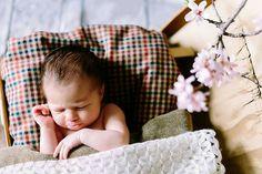 Newborn cute boy home sleep suitcase almond tree