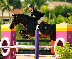 I challenge you to find a nicer junior show jumping picture