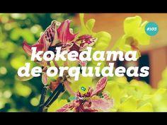 Como fazer kokedama de orquídeas #103 - YouTube