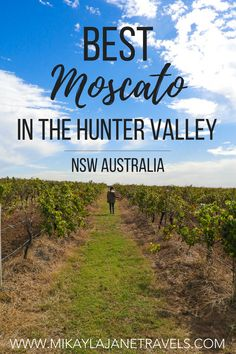Best Moscato In The Hunter Valley - Mikayla Jane Travels Best Moscato Wine, Hunter Valley Winery, Wine Tasting Experience, Wine Sale, Gifts For Wine Lovers, Le Far West, Amazing Destinations, Holiday Destinations, Australia Travel