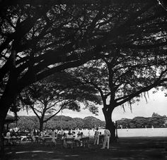 Baseball game at the Polo Club 1941 Filipiniana, Manila Philippines, Polo Club, We Remember, Tropical Garden, Vintage Pictures, Time Travel, Nostalgia, The Past