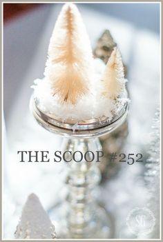 THE SCOOP #252