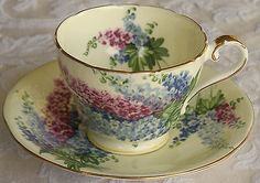 """Special Antique """"Yellow"""" Aynsley Delphiniums Tea Cup and Saucer"""